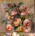 Catalogo Artisti   Florales