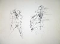Quadro di  Claude Falbriard - Nudi lÁpiz colorado papel