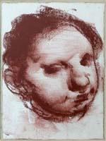 Quadro di  Pietro Annigoni - Ritratto sanguine papier