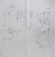 Quadro di  Claude Falbriard - Figure pluma papel