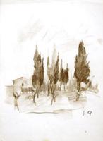 Quadro di  Gino Tili - Cipressi pastel papel