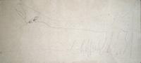 Quadro di  Silvio Loffredo - Gatto aquarelle papier