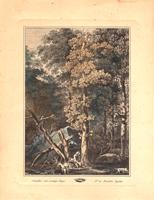 Quadro di  Antiquariato - Paesaggio alberato con cacciatore litografia carta