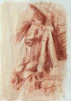 Work of Luigi Pignataro  cavallo