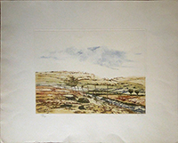 Work of P. Rojas - Paesaggio lithography paper