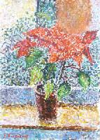 Quadro di Guido Borgianni - Stella di Natale  olio tela