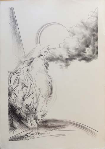 Art work by Antonio Ciccone Gallina in fuga  - lithography paper