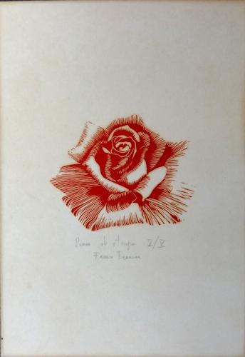 Quadro di Franco Francini Rosa  - litografia carta