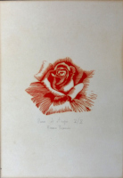 Work of Franco Francini - Rosa  lithography paper