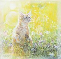 Quadro di Andrea Alfani  - Il micio e la libellula  olio tela