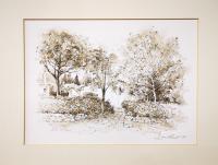 Loris Centelli - Casa con alberi