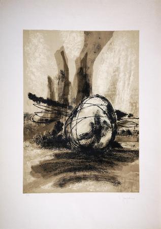 Quadro di D. Spagadino Senza titolo - litografia carta