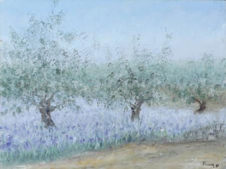 Quadro di Graziella Piccone Ulivi - olio tela