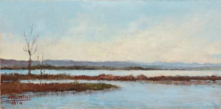 Quadro di Ugo Bini Lago di Massaciuccoli  - olio tela