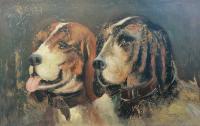 Pozzi - Cani