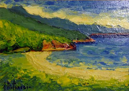 Art work by Alberto Pistoresi Marina all'Isola D'Elba - acrylic paper