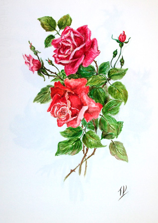 Quadro di T. Valentini Rose rosse - acquerello carta