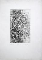 Quadro di Raffaello Lopez - Fiori III litografia carta