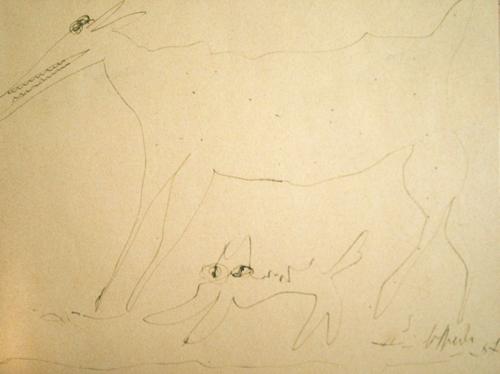 Quadro di Silvio Loffredo Cane e gatto - lapis carta