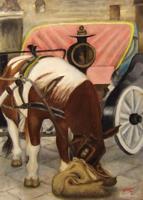 Beucci - Cavallo in sosta
