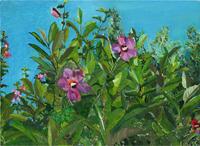 Work of  Setti - Fiori e piante acrylic paper