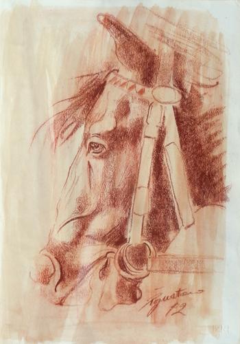 Art work by Luigi Pignataro cavallo - blood paper