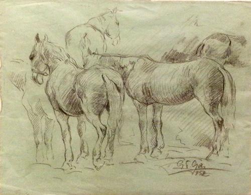 Quadro di Gino Paolo Gori Studio di cavalli - lapis carta