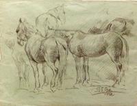 Quadro di Gino Paolo Gori  Studio di cavalli