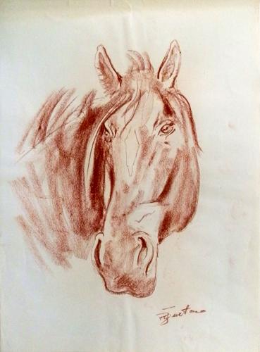 Quadro di Luigi Pignataro Cavallo - sanguigna carta