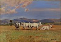 Quadro di Giacomo Vaccaro  Vacche sull'Amiata
