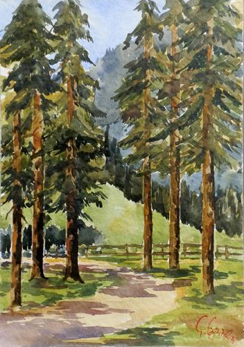 Quadro di Giuseppe Capineri Sentiero nel bosco - acquerello cartone