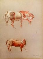 Quadro di Franco Trevisi - Cavalli stampa cartone