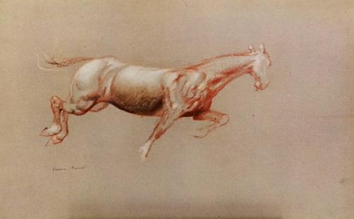 Quadro di Franco Trevisi Cavallo - stampa cartone