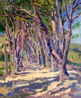Work of Gino Paolo Gori - Pineta di Castiglioncello oil canvas