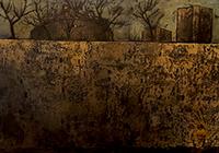 Work of Leonardo Papasogli  Il circo