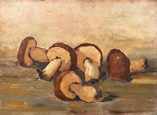 Quadro di  Socci Natura morta di funghi - olio tavola