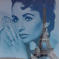 Quadro di Piero Maffessoli (Malipiero) - Osmosi - Liz Taylor - Torre Eiffel collage carta
