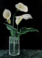 Flowers -  Marco Boni