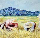 paintings  Lasti