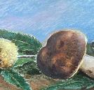 Quadri di Paolo Galli